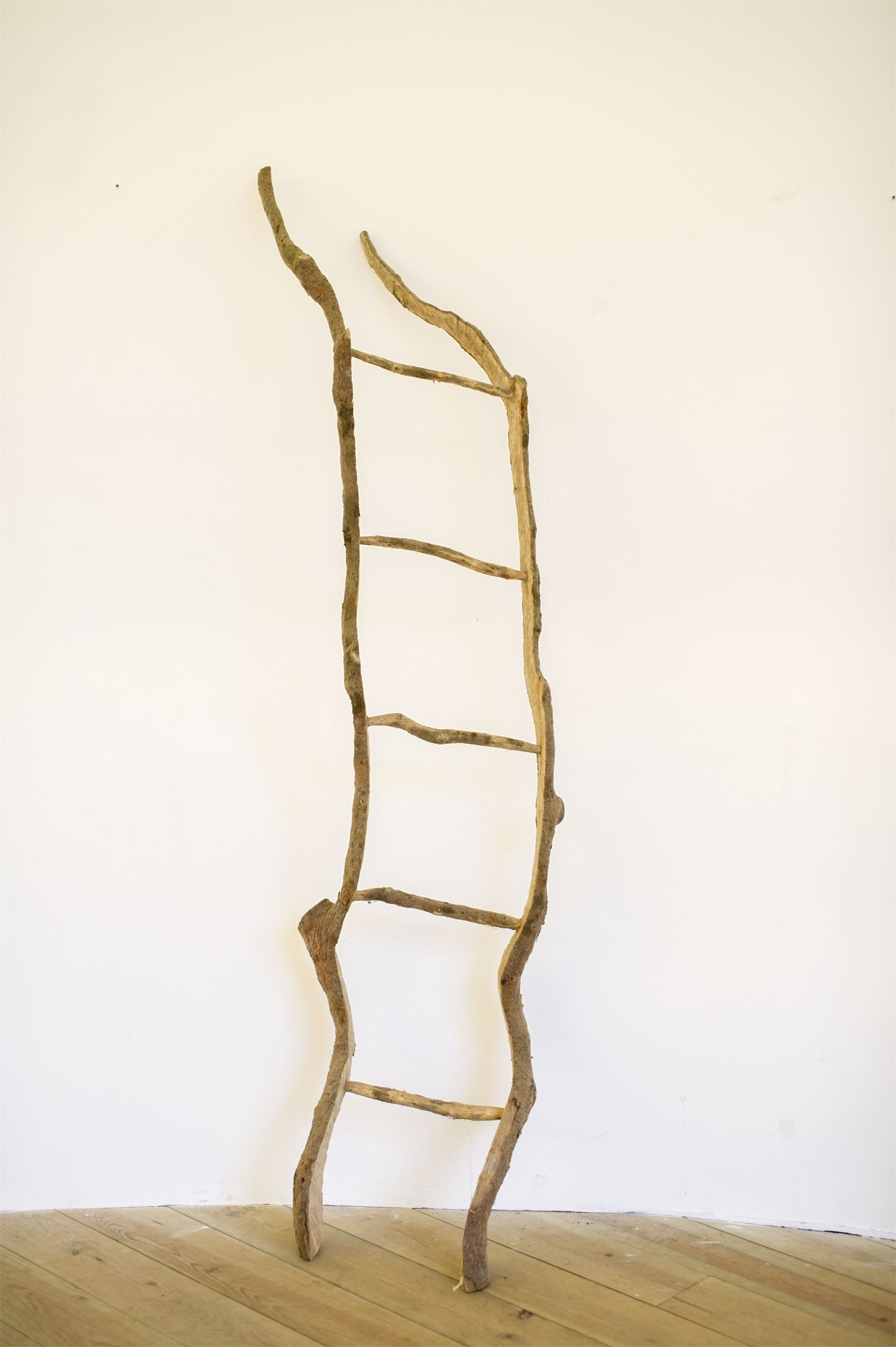 Série Escadas para o Céu, original Nature Wood Sculpture by Paulo Neves