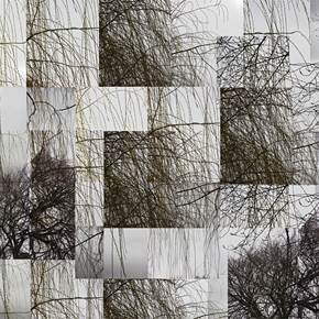 Winter - Weeping Willow Opus 1, original Nature Digital Photography by Shimon and Tammar Rothstein