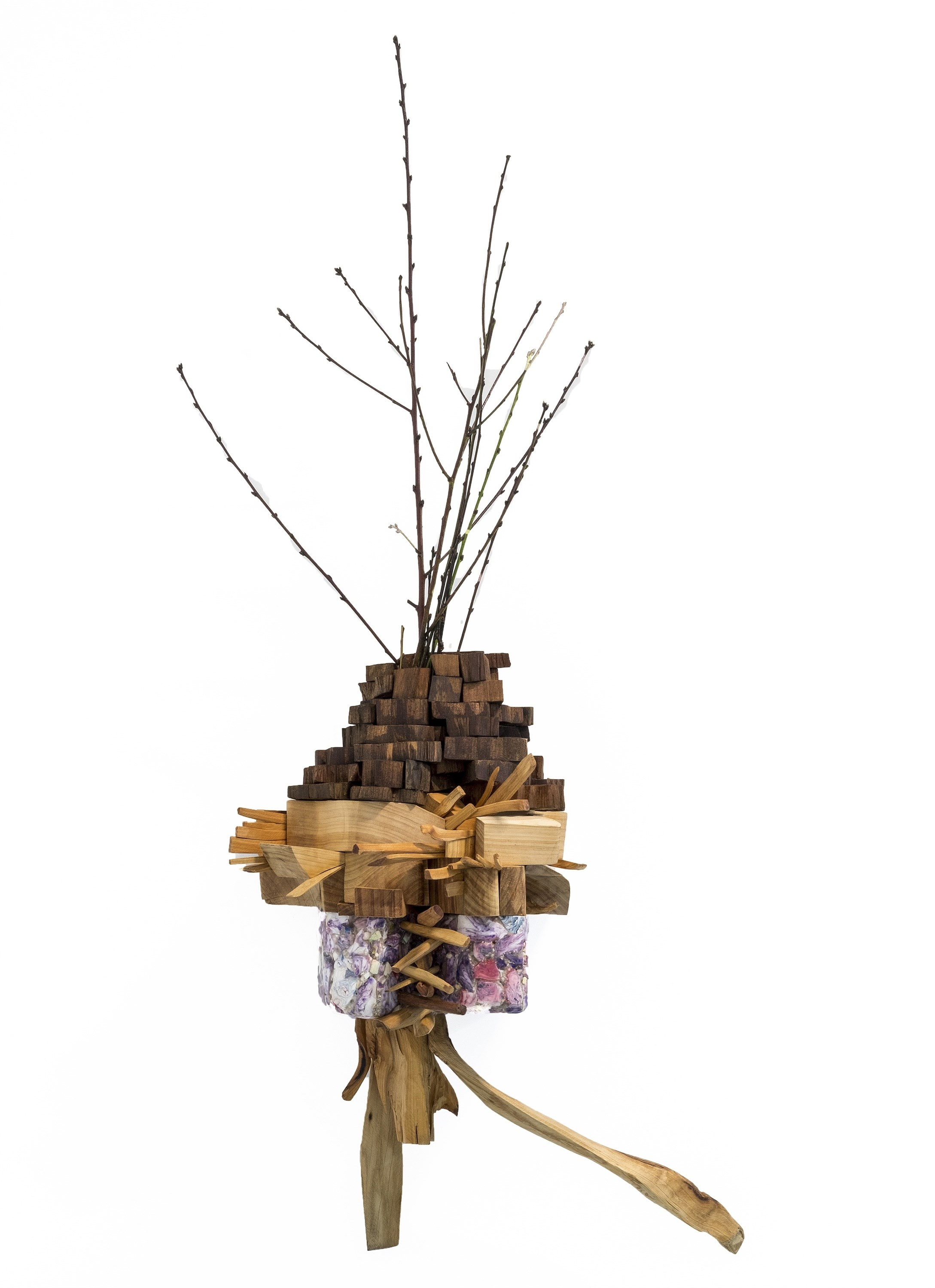 Envolver, resolver, nascer IV, original Nature Wood Sculpture by Miguel  Neves Oliveira
