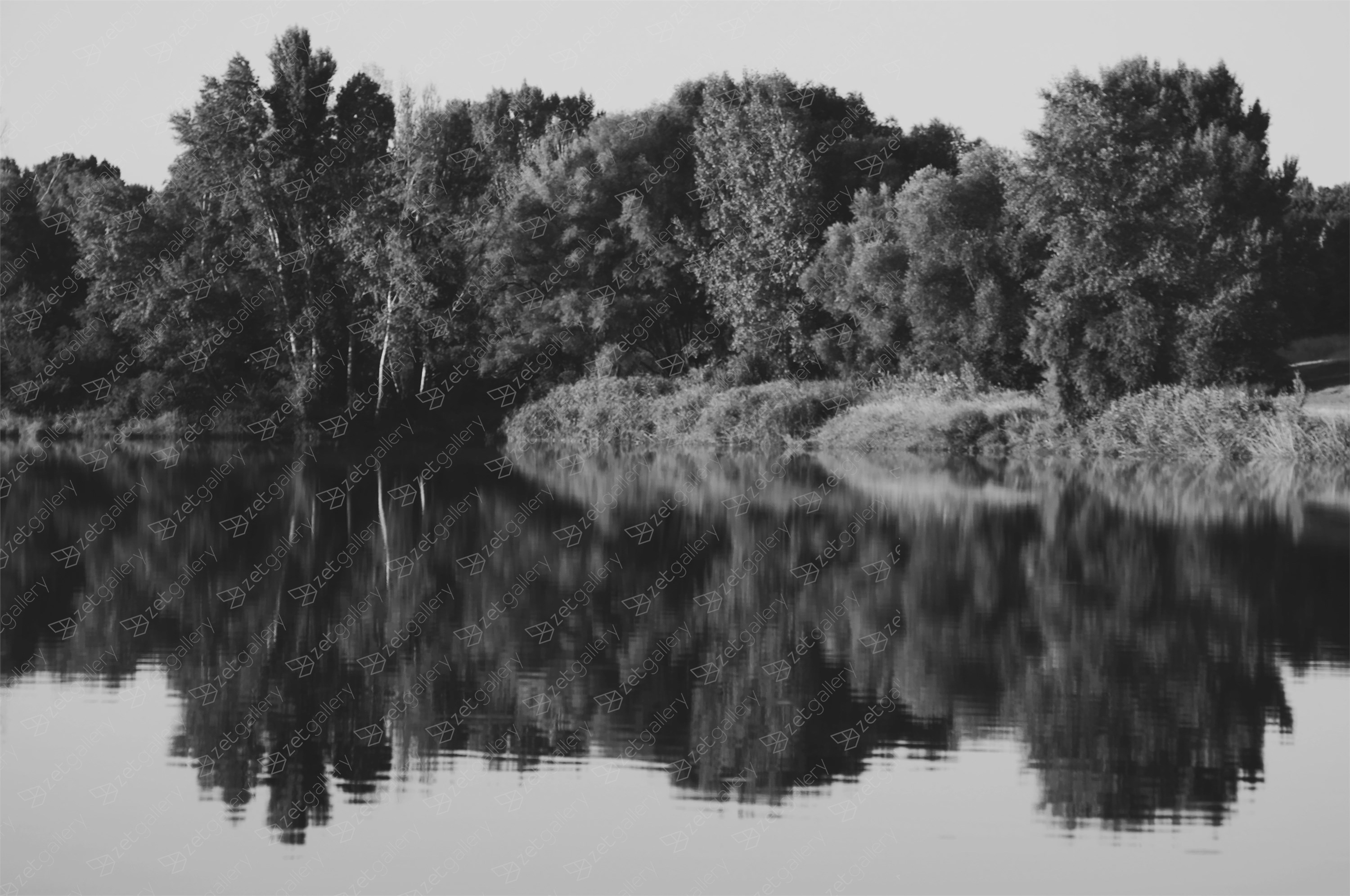 Reflected No.3, original B&W Digital Photography by Svetlana Neskovska