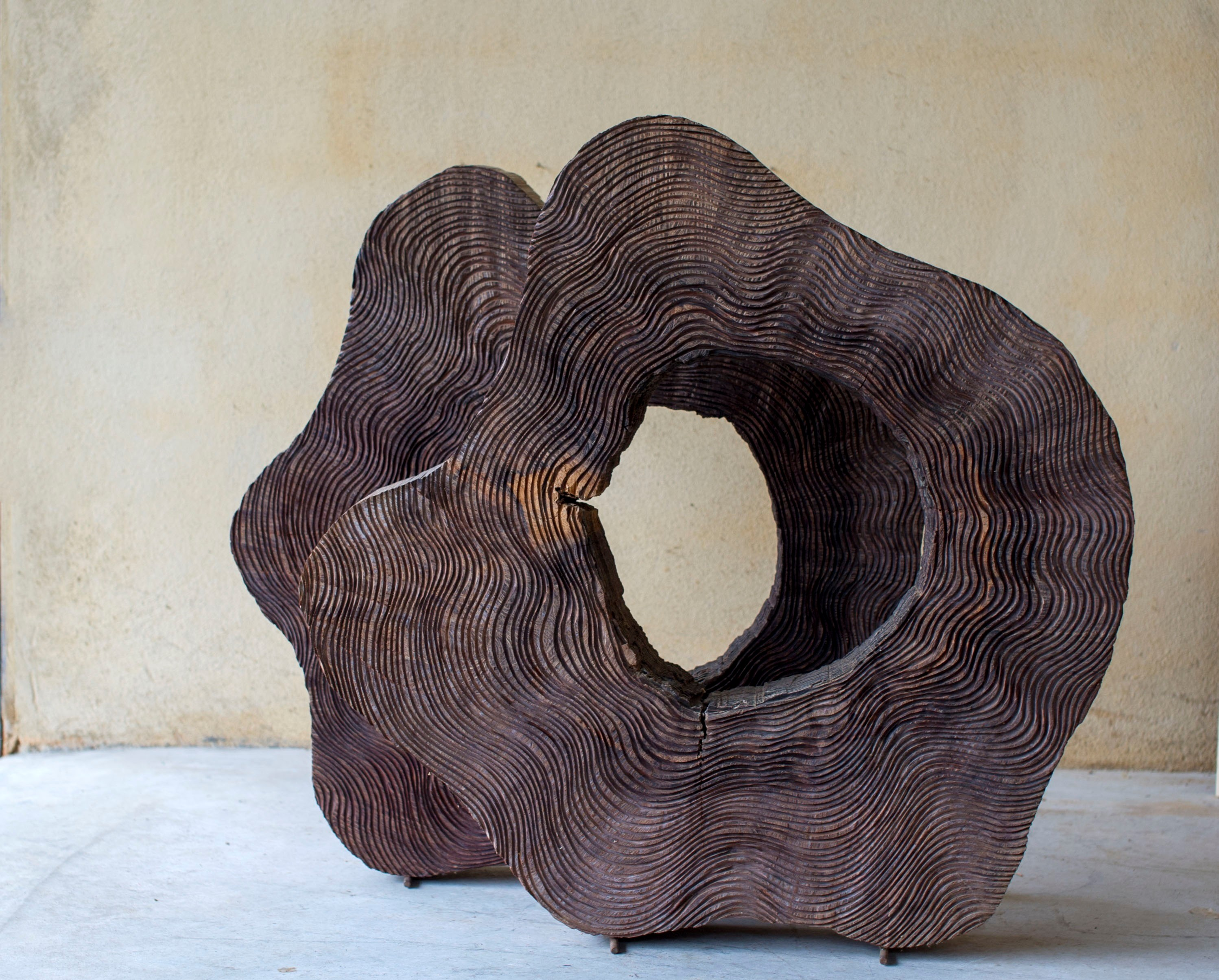 Rodelas, original Nature Wood Sculpture by Paulo Neves