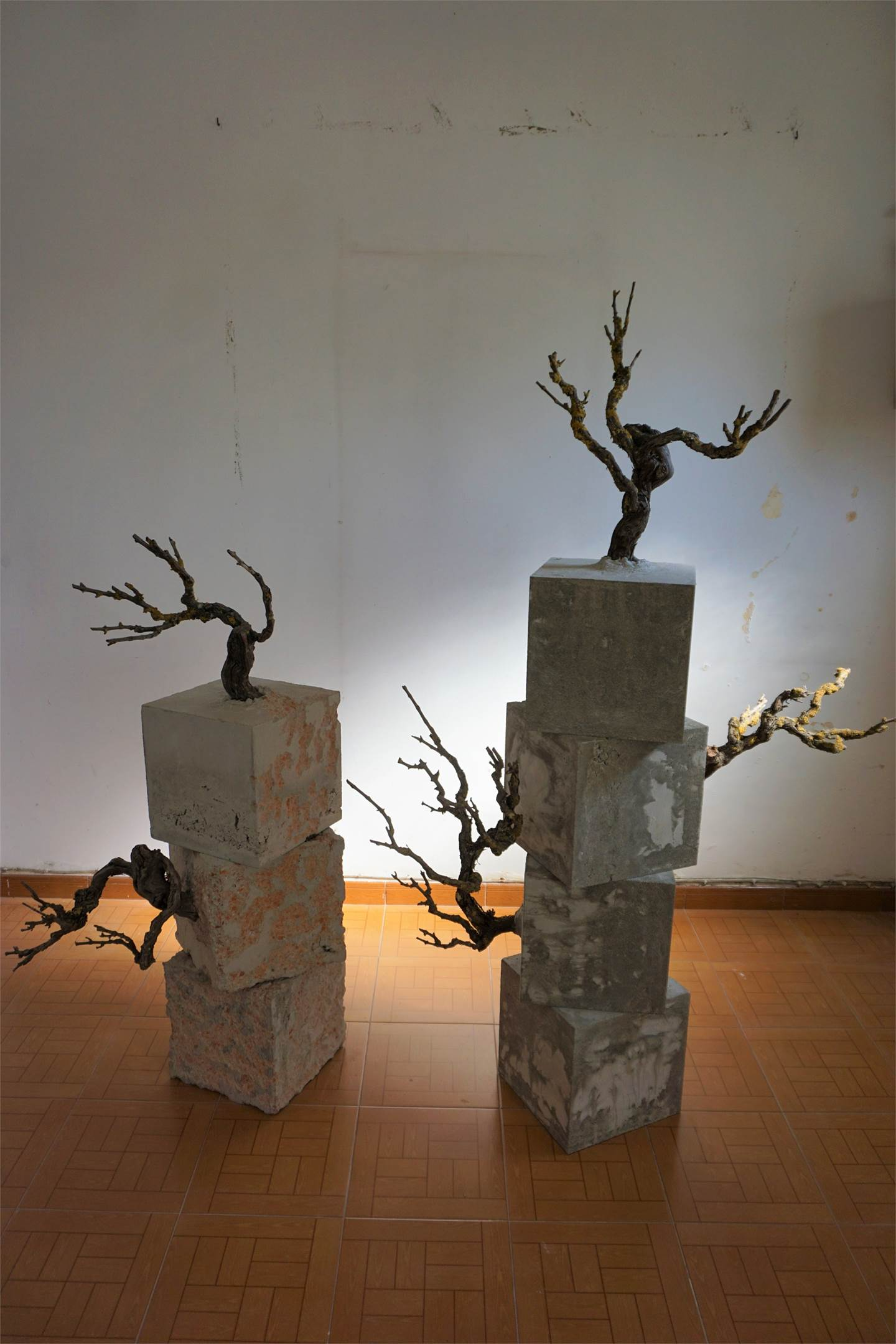 Conflito , original Abstract Wood Sculpture by Jéssica Burrinha