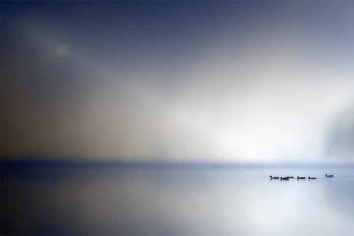 No mundo do maravilhoso e do fantástico..., original Nature  Photography by Horácio Graça