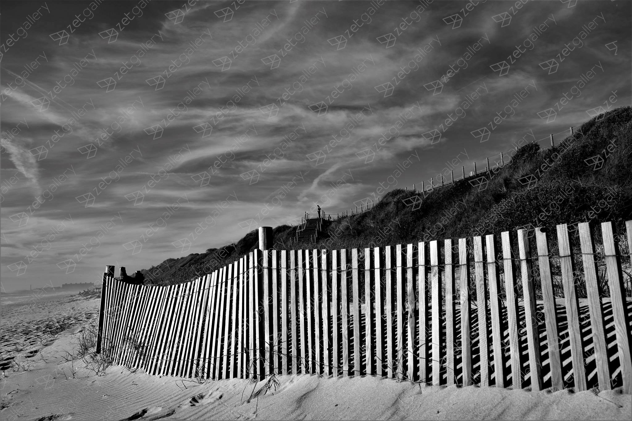 The fence, original B&W Analog Photography by Eduardo Rosas