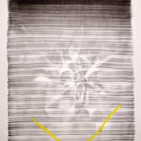 Moire #2, original Abstract Ink Drawing and Illustration by Rui Horta Pereira