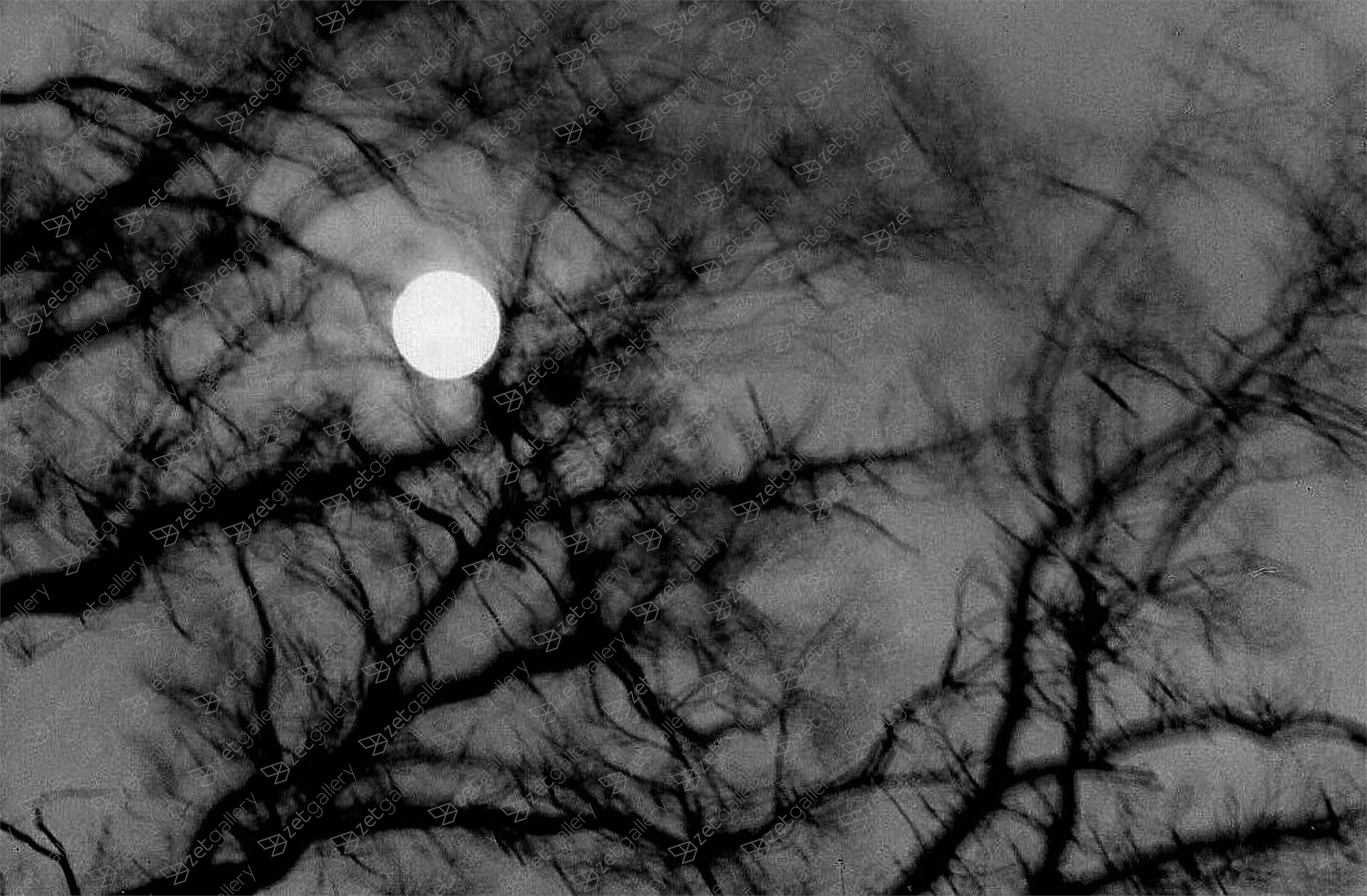 Full-Moon-Night, original B&W Analog Photography by Heinz Baade