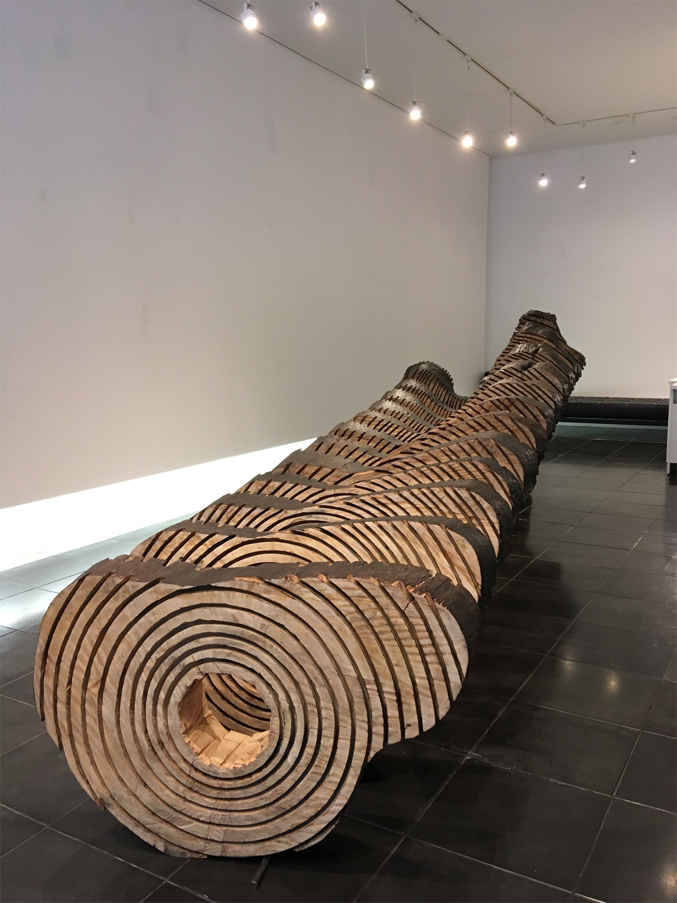 O tronco, original Nature Wood Sculpture by Paulo Neves