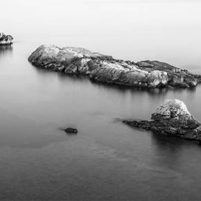 BIRD ON A ROCK II, Medium Edition 1 of 10, original Abstract Digital Photography by Benjamin Lurie