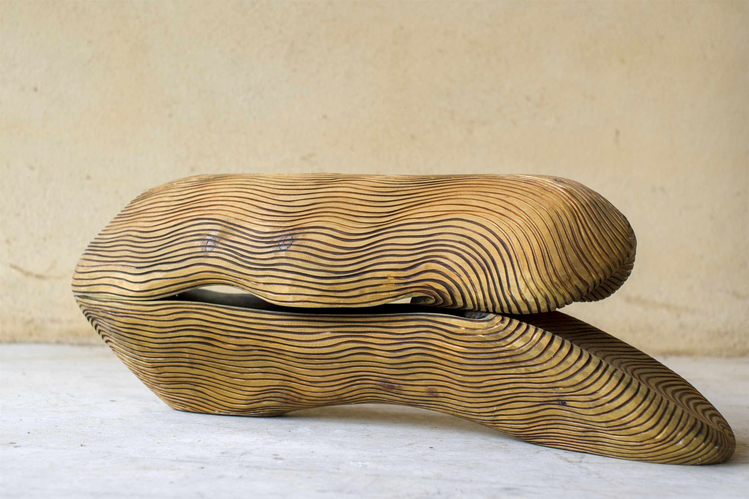 Série Biografias, original Nature Wood Sculpture by Paulo Neves
