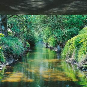 The Bridge is Flowing 2 - (Sizes and Materials variable), original Landscape Analog Photography by Goeth Zilla