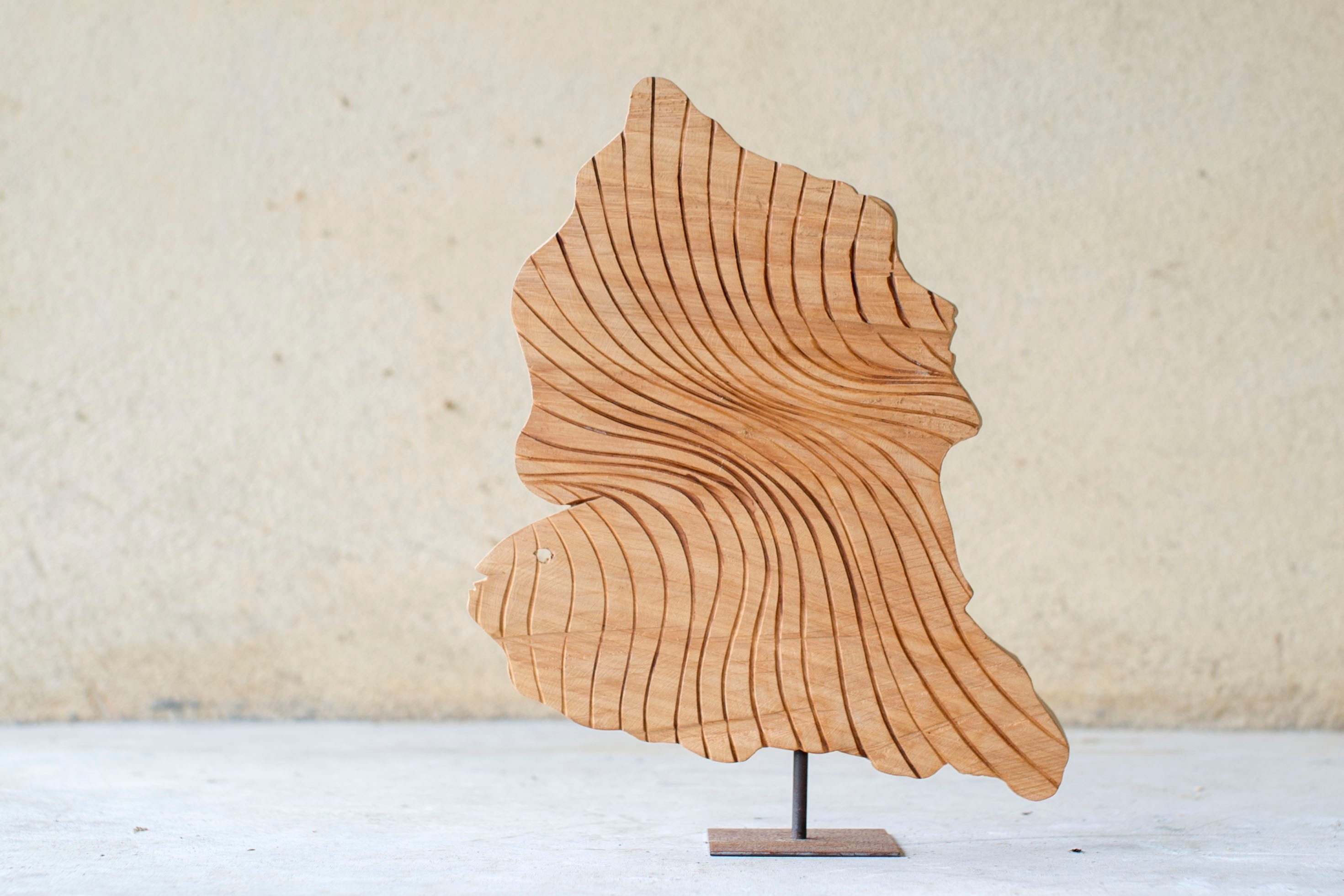 Sem título, original Nature Wood Sculpture by Paulo Neves